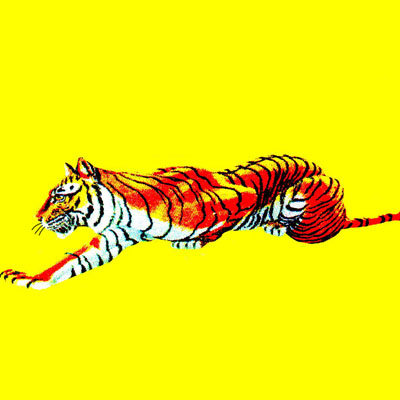 tigres de tigre